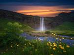 Обои Небольшой водопад и на переднем плане желтые цветы, Селйяландсфосс (Хамрагардар / Южная кольцевая дорога, Южный регион, Исландия, фотограф AtomicZen
