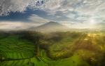 Обои Горный пейзаж с зелеными террасами в лучах солнца, Бали, фотограф Даниил Коржонов
