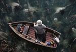 Обои Рыбак в лодке смотрит на призраков в Dead lake / Мертвом озере, by Stefan Koidl