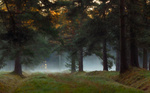 Обои Солнечный свет, пробивающийся сквозь кроны деревьев, туманным осенним утром в Павловском парке, Санкт-Петербург, фотограф SHE (Aiya) Таня