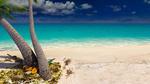 Обои Тапки и закупоренная бутылка возле пальмы на песочном берегу океана
