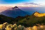 Обои Вулкан Merapi / Мерапи в тумане на рассвете, Java island, Indonesia / остров Ява, Индонезия