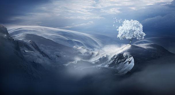 Стая белых птиц летит возле Snow tree / Снежного дерева в горах зимой, by ElenaDudina