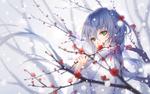 Обои Vocaloid Luo Tianyi / Вокалоид Луо Тьянуй, by TID