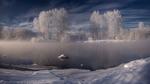 Обои Деревья, покрытые морозным инеем, на берегу незамерзшей реки, фотограф marateaman