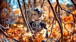 Обои Модель Aнжелика с камерой в руках стоит в окружении осенних веток, by Markus Hertzsch