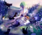 Обои Девочка с ццветами на лице сидит в окружении кошек и цветов, by lluluchwan