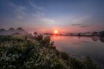 Обои Берег реки, поросший белыми цветами, в свете красного солнца, фотограф Андрей Чиж