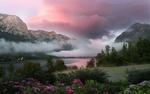 Обои Туманное утро у озера в альпийских горах, с цветущими рододендронами на берегу. Австрия, фотограф Федоров Константин