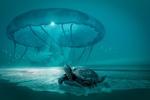 Обои Черепаха на берегу и огромная медуза над морем, by janrye