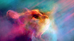 Обои Мордочка кота в облаках, by JoeyJazz