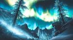 Обои Ели, покрытые инеем, на фоне ночного неба и северного сияния, арт по игре Skyrim / Скайрим, by WatchTheSkiies