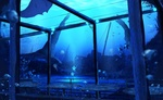 Обои Таинственная цветущая подводная терраса