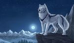 Обои Белый волк с черными полосами стоит на выступе скалы зимней лунной ночью, by DeyVarah