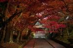 Обои Аллея в осеннем парке, ведущая к храму, Japan / Япония