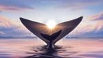 Обои Североатлантический кит на фоне солнца, by Ciorano
