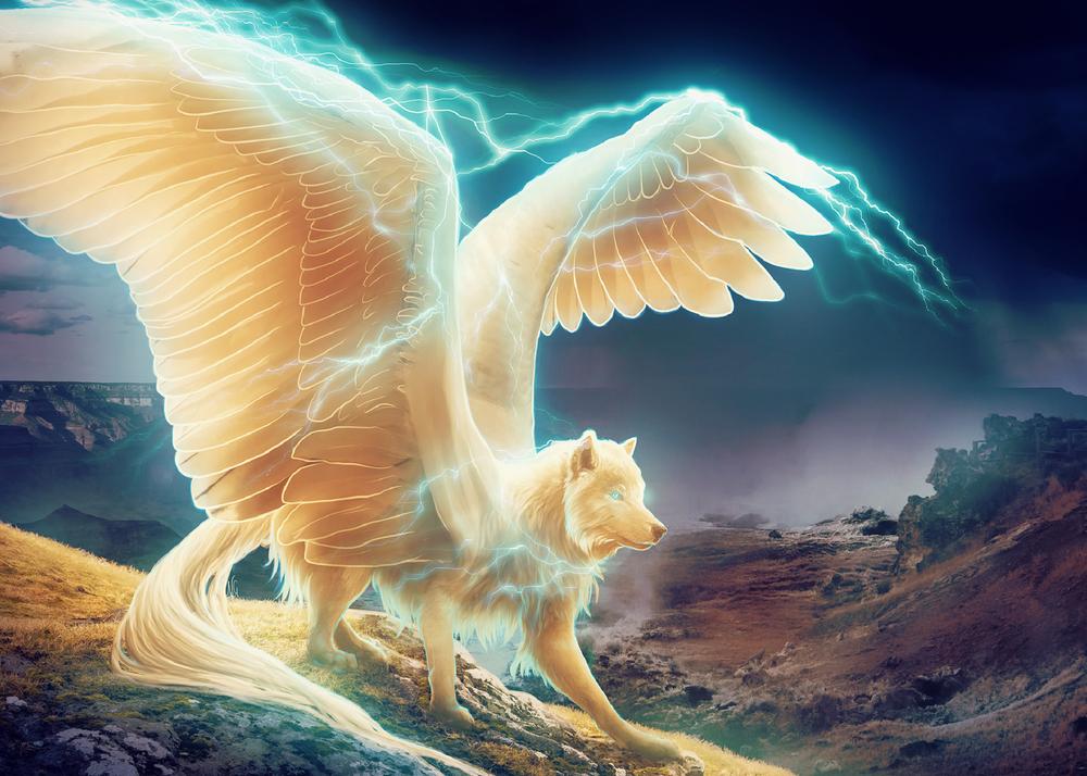 Обои Фантастический волк с крыльями на рабочий стол
