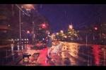Обои Девушка с зонтом стоит на пешеходной дорожке, и за ней идет кошка