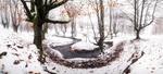 Обои Речка в лесу, покрытым первым снегом