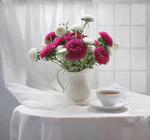Обои Чашка с чаем и кувшин с астрами стоит на столе