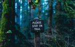Обои Предупреждающая табличка в лесу (please stay on trail / пожалуйста, оставайтесь на тропе)