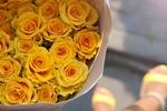 Обои Букет желтых роз
