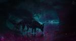 Обои Черный волк стоит в воде в сумрачном лесу, by Nikkayla