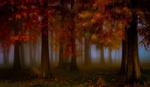 Обои Осенний парк в тумане, фотограф donato caragnano