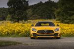 Обои Желтый Mercedes-AMG GT R (C190) 2019 стоит на дороге у цветущего поля