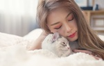 Обои Девушка с кошкой в кровати