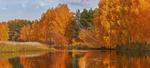 Обои Осенние деревья у реки. Фотограф Олег Богданов