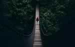 Обои Парень идет по подвешенному мосту, by Penguinuhh