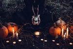 Обои Девушка с рогатым черепом в руках сидит на земле среди свечей и тыкв
