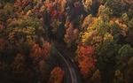 Обои Дорога среди осенних деревьев