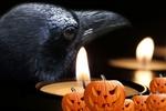 Обои Черный ворон, горящие свечи и светильники Джека, by Susan Cipriano