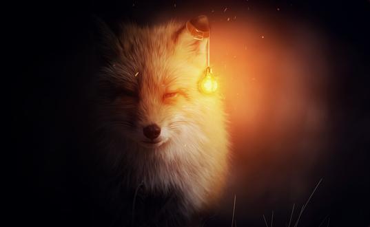 секретов хитрых лиса с лампой картинка греции