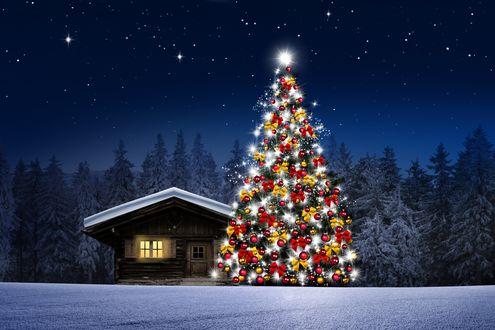 Конкурсная работа Наряженная новогодняя елка у деревянного дома на фоне ночного заснеженного леса