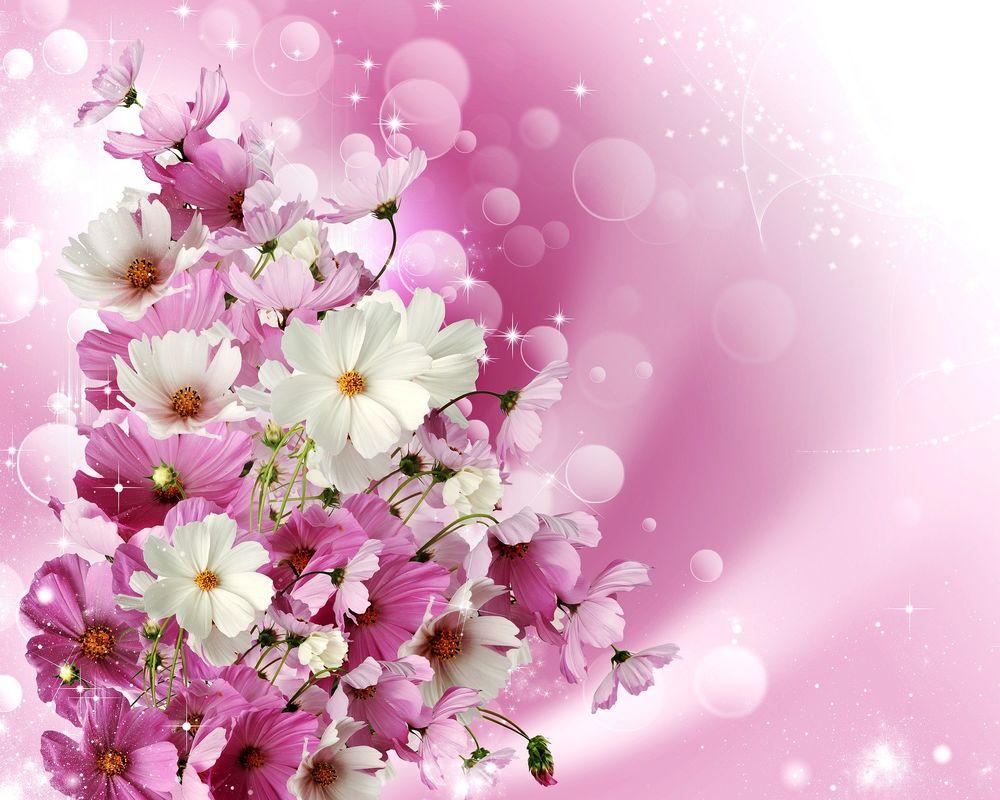Обои . Цветы foto 16