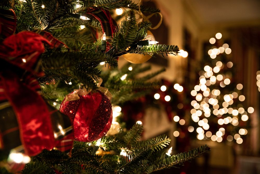 Обои Новогодняя елка с украшениями, by T. Rampersad на ...