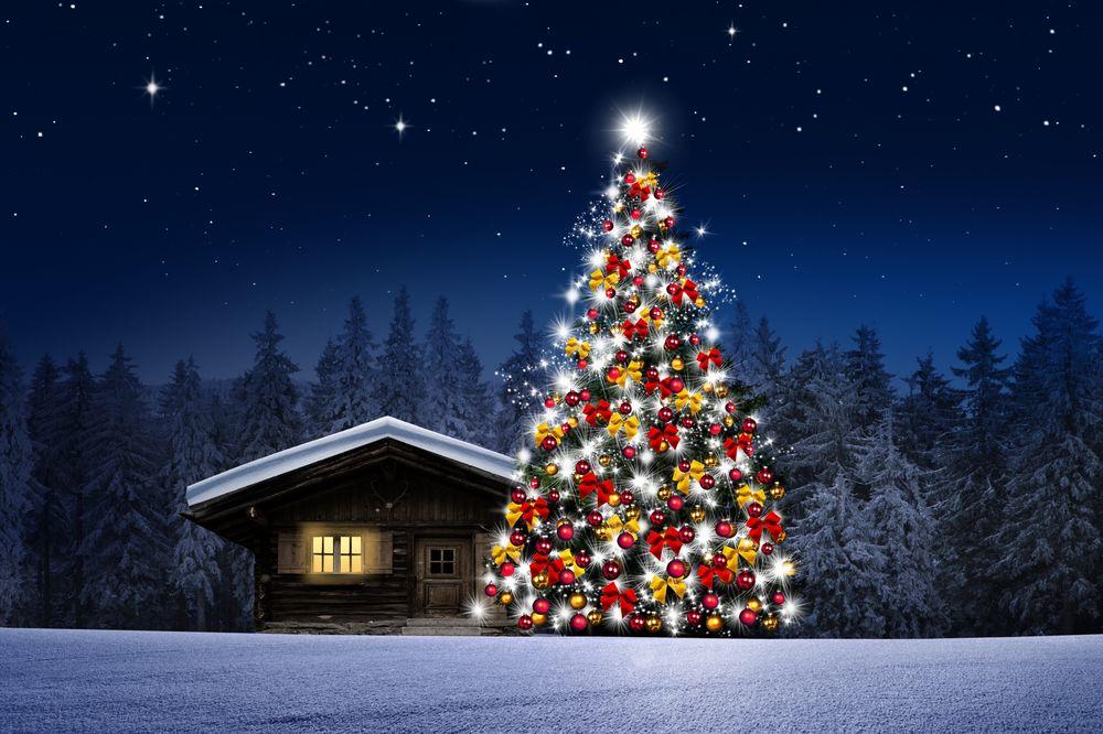 Обои для рабочего стола Наряженная новогодняя елка у деревянного дома на фоне ночного заснеженного леса