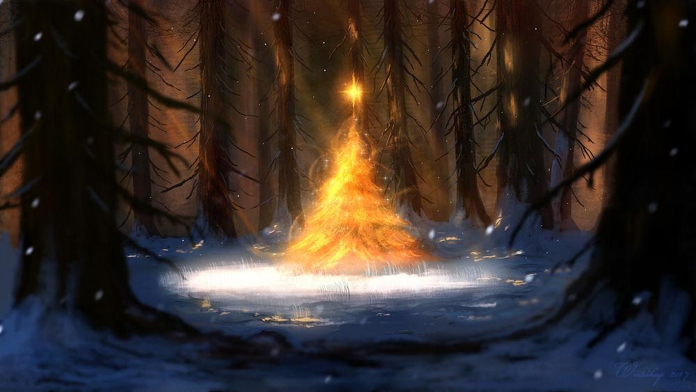 Обои для рабочего стола Сияющая новогодняя елка в лесу, by Ben J