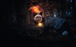 Обои Лиса в лесу, by 0l-Fox-l0