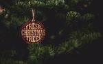 Обои Еловые ветки (Fresh Christmas Trees / Свежие Рождественские елки), by Tim Mossholder