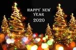 Обои Наряженные елки в разноцветных бликах (Happy New Year 2020 / Счастливого Нового Года 2020), автор фона Jiri Vaclavek
