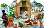 Обои Кошки, собаки, санки, елки на фоне собачьей будки