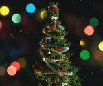 Обои Новогодняя елка на фоне разноцветного боке