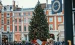 Обои Новогодняя елка на площади города, by Nicolas J Leclercq