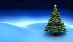 Обои Новогодняя елка на снегу