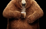 Обои Медведь с чашкой горячего кофе, реклама Nestle Coffee-Mate