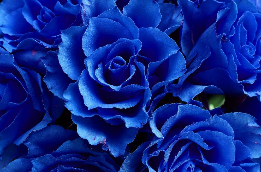 картинки в розово-синем цвете первую
